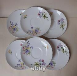 Unused Vintage SHELLY WILD FLOWERS Baby Blue Handle 21 Pcs Tea / Coffee Set