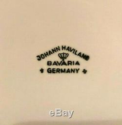 Johann Haviland Vintage Bavière Bleu Garland Allemagne Café Set 19 Pièces