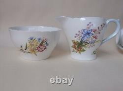 Non Utilisé Vintage Shelly Wild Flowers Baby Blue Handle 21 Pcs Tea / Coffee Set